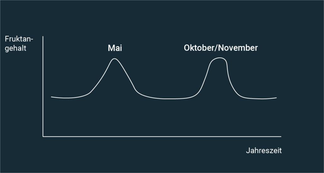 Der Fruktangehalt steigt im Mai sowie im Oktober und November